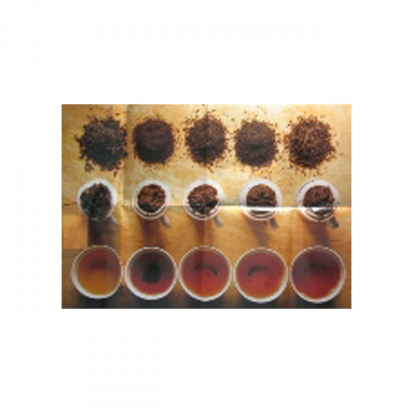 "Poster ""5 Different Infusions"""