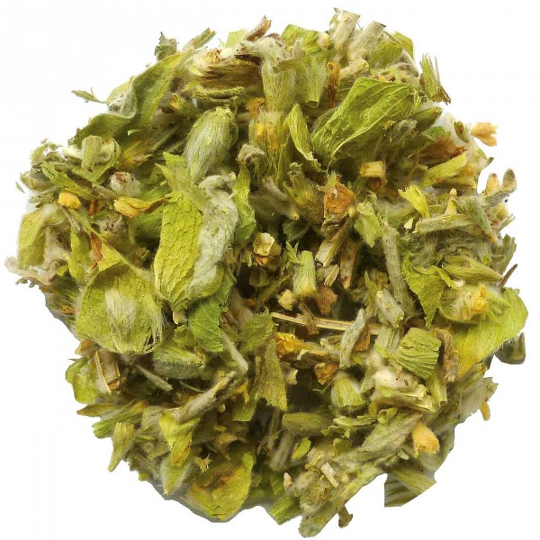 Greek Mountain Tea (Sideritis scardica)